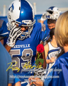 Friday night lights with Needville Blue Jays vs Royal Falcons with a final score of 62-15  To see more of the photographs I captured during this game go to http://roykasmirphotography.com/event/2017-09-08-Needville-Football/  For the photographers that want to know all the settings for this photograph, it was created 9/8/2017 6:32:45 PM Using my PENTAX K-3 set at ISO400 with a shutter speed 1/1250 sec and an aperture of ƒ / 2.8. My lens was  at 78 mm  #bluejaystadium, #football, #footballfield, #fridaynightlights, #highschoolfootball, #needville, #needvillebluejays, #needvilletexas, #needvilletx, #royalfalcons, #roykasmir, #roykasmirphotography, #texasphotographer, #uniform